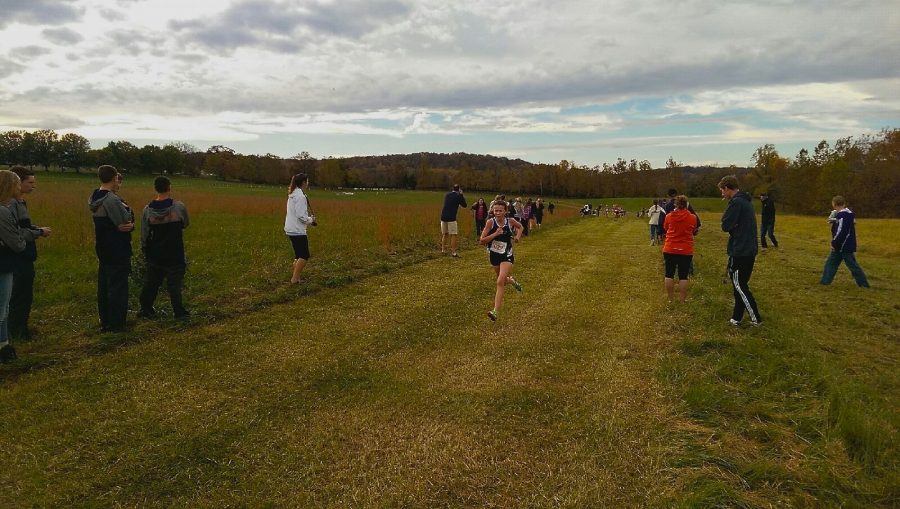 Cross+Country+Takes+on+Conference+14+Championships