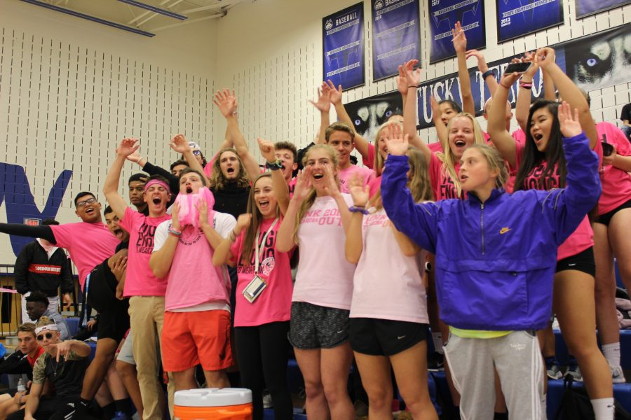 Community+Digs+Deep+to+Raise+Awareness%3A+Varsity+volleyball+beat+Broad+Run+3+sets+to+1