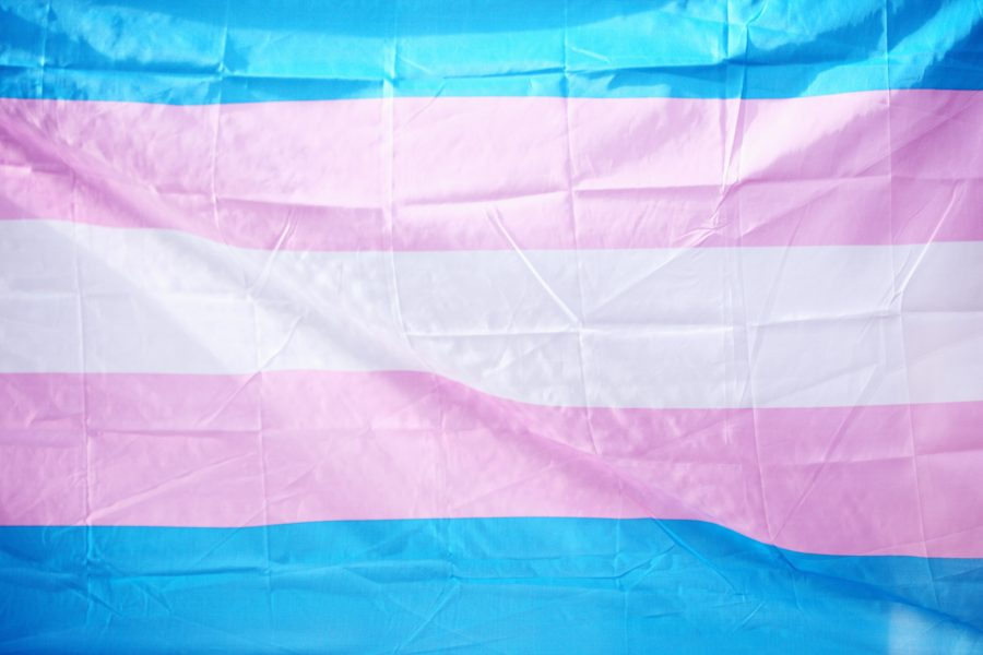 What Transgender Awareness Week Means for Students in 2020