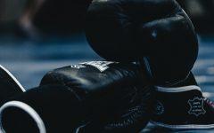 Paul vs Mayweather Fight Information